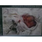 SLEEPING BABIES - 500 Pzas.