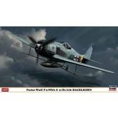 FOCKE-WULF FW 190A-8W/BV246 HAGELKORN E1/48
